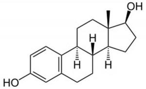œstrogène