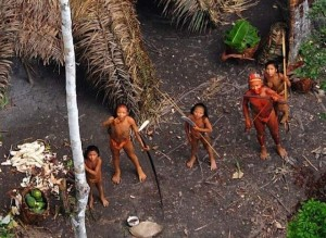 Population primitive