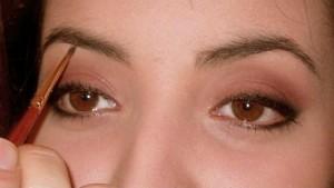 Les sourcils