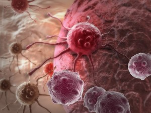 Virus cancérigènes